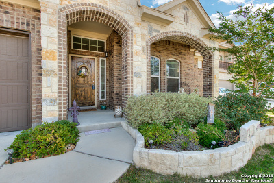 Cibolo Single Family Home New: 509 Bison Ln