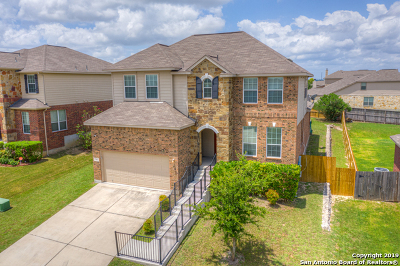 New Braunfels Single Family Home New: 361 Maple Way