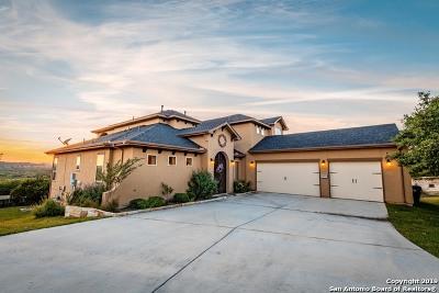 San Antonio Single Family Home New: 26027 Tivoli Meadows