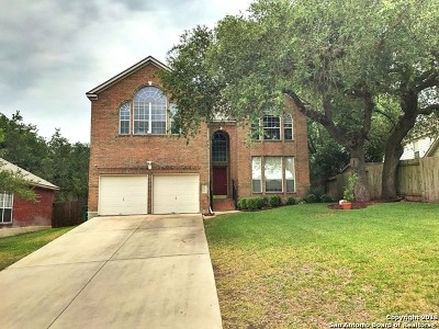 San Antonio Single Family Home New: 24610 Dawn Arrow