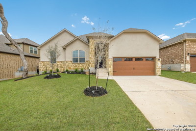 New Braunfels Single Family Home New: 250 Sigel Ave