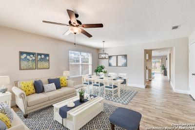 San Antonio Single Family Home New: 6284 Lakeview Dr
