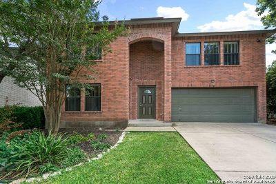 San Antonio Single Family Home New: 17923 Redriver Sky