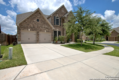 Seguin Single Family Home Active Option: 3062 Hidden Meadows