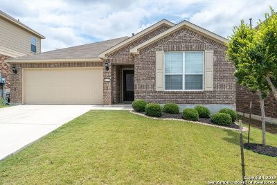 Helotes Single Family Home New: 10830 Red Sage