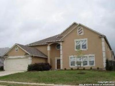 Guadalupe County Single Family Home New: 132 Springtree Grove