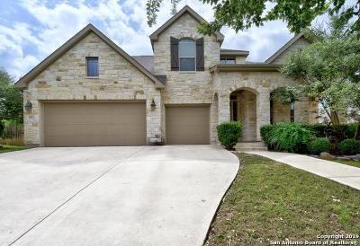 San Antonio Single Family Home New: 25810 Plumbago