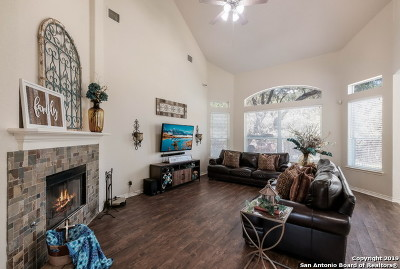San Antonio Single Family Home New: 26008 Stone Canyon