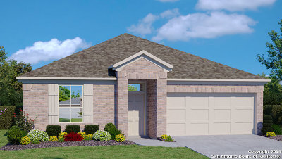 New Braunfels Single Family Home New: 508 Agave Flats