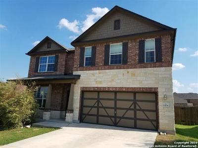 San Antonio Single Family Home New: 13734 Sungrove Vw