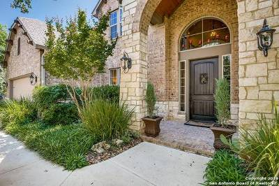 Boerne Single Family Home New: 28107 Vine Cliff