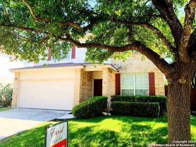 San Antonio Single Family Home New: 21418 Encino Lookout