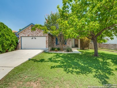 San Antonio Single Family Home New: 16034 Watering Point Drive