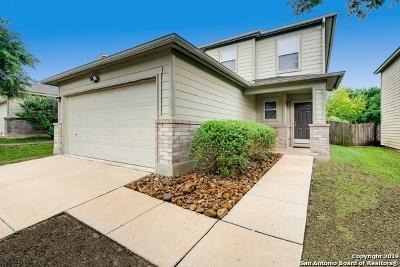 San Antonio Single Family Home New: 5522 Spring Walk