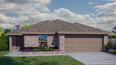 New Braunfels Single Family Home New: 540 Agave Flats