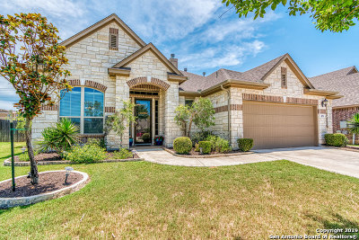 New Braunfels Single Family Home New: 479 Mission Hill Run