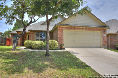 Helotes Single Family Home Active Option: 8811 Shuteye Peak
