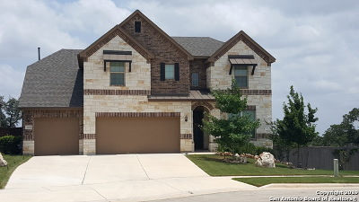 New Braunfels Single Family Home New: 1153 Creek Canyon
