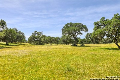 Boerne Farm & Ranch For Sale: 40 Guthrie Road