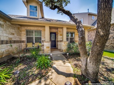 Helotes Single Family Home New: 13115 Essen Forest