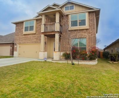 San Antonio Single Family Home New: 11123 War Emblem