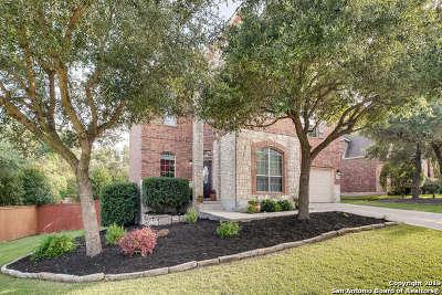 San Antonio Single Family Home New: 3430 Highline Trail