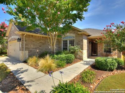 Single Family Home Active Option: 8211 Rockwell Vista