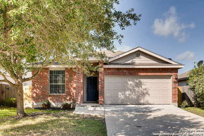 New Braunfels Single Family Home New: 2672 Hunt St