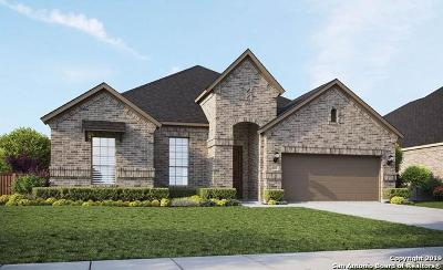 Boerne Single Family Home New: 117 Destiny Drive