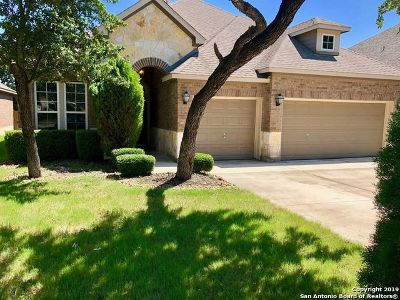 Helotes Single Family Home New: 10720 Barnsford Ln