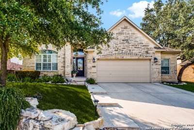 Stone Oak Single Family Home New: 834 Celestial View
