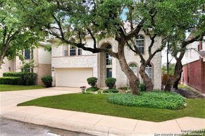Stone Oak Single Family Home New: 22415 Madison Park