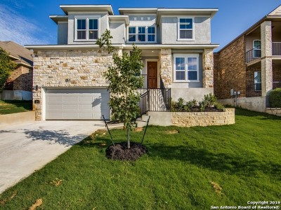Cibolo Single Family Home New: 244 Nomad Ln