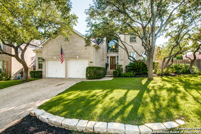 Stone Oak Single Family Home New: 20803 Wind Springs