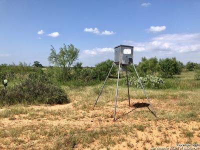 Atascosa County Farm & Ranch For Sale: 10725 Fm 1333