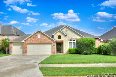 New Braunfels Single Family Home New: 2354 Oak Willow