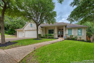 Stone Oak Single Family Home For Sale: 407 Carpenter Circle
