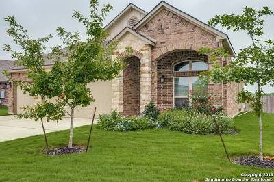Bexar County Single Family Home New: 8143 Limerick Falls