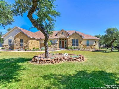 New Braunfels Single Family Home New: 127 Stone Canyon