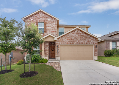 Boerne Single Family Home New: 27309 Paraiso Manor