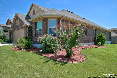 Cibolo Single Family Home New: 273 Cansiglio