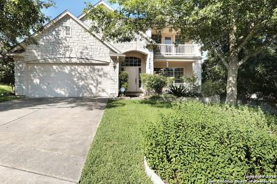 Stone Oak Single Family Home New: 24906 Twin Arrows