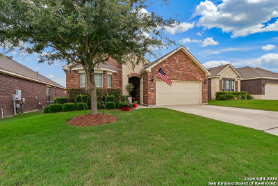 Boerne Single Family Home For Sale: 27451 Camino Tower