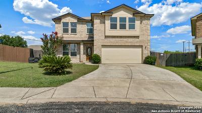 San Antonio Single Family Home New: 6506 Backbay Pass
