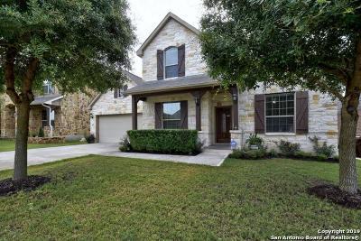 Bexar County Single Family Home New: 4618 Amos Pollard