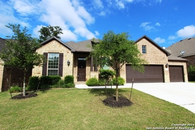 Bexar County Single Family Home New: 25835 Enchanted Dawn