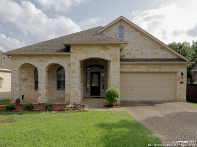 San Antonio TX Single Family Home New: $359,000