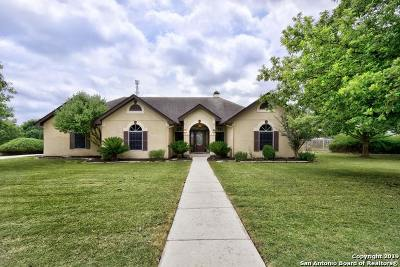 Boerne Single Family Home New: 29202 Saddle Song