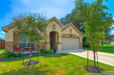 Bexar County, Medina County Single Family Home New: 8843 Winchester Way