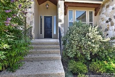 Bexar County Single Family Home New: 29026 Tivoli Way